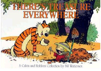 There S Treasure Everywhere: A Calvin And Hobbes Collection (Paperback)