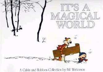 It S A Magical World: A Calvin And Hobbes Collection (Calvin And Hobbes Collection) (Paperback)